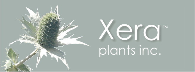 xera plants inc